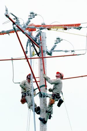 S853556 Distribution Tools On The Job